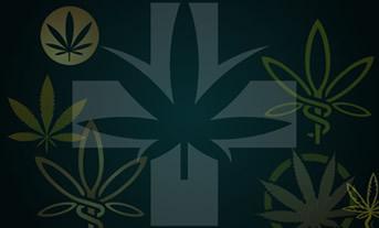 Dispensary Branding and Identity Design